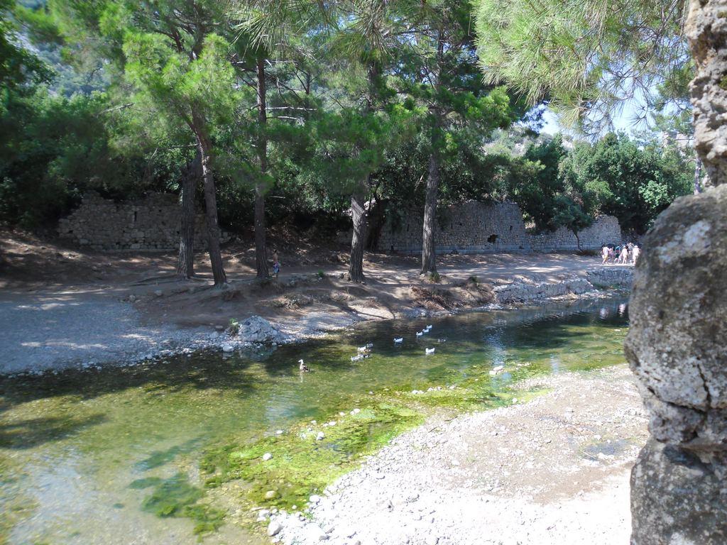 The ancient city of Olympos - 2012, Antalya, Turkey - 15